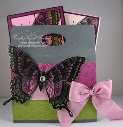 Swallowtail Box & Cards