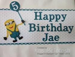jaes-birthday-bag